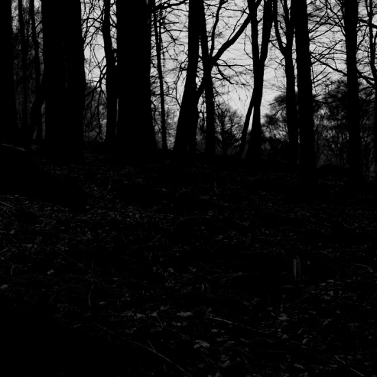 Dall'oscuro II